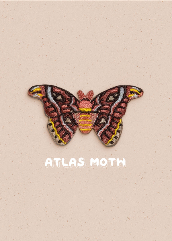 Atlas Moth Pin