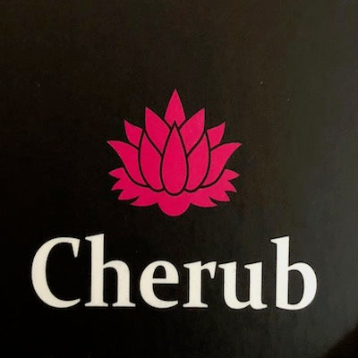 Cherub Children's Apparel