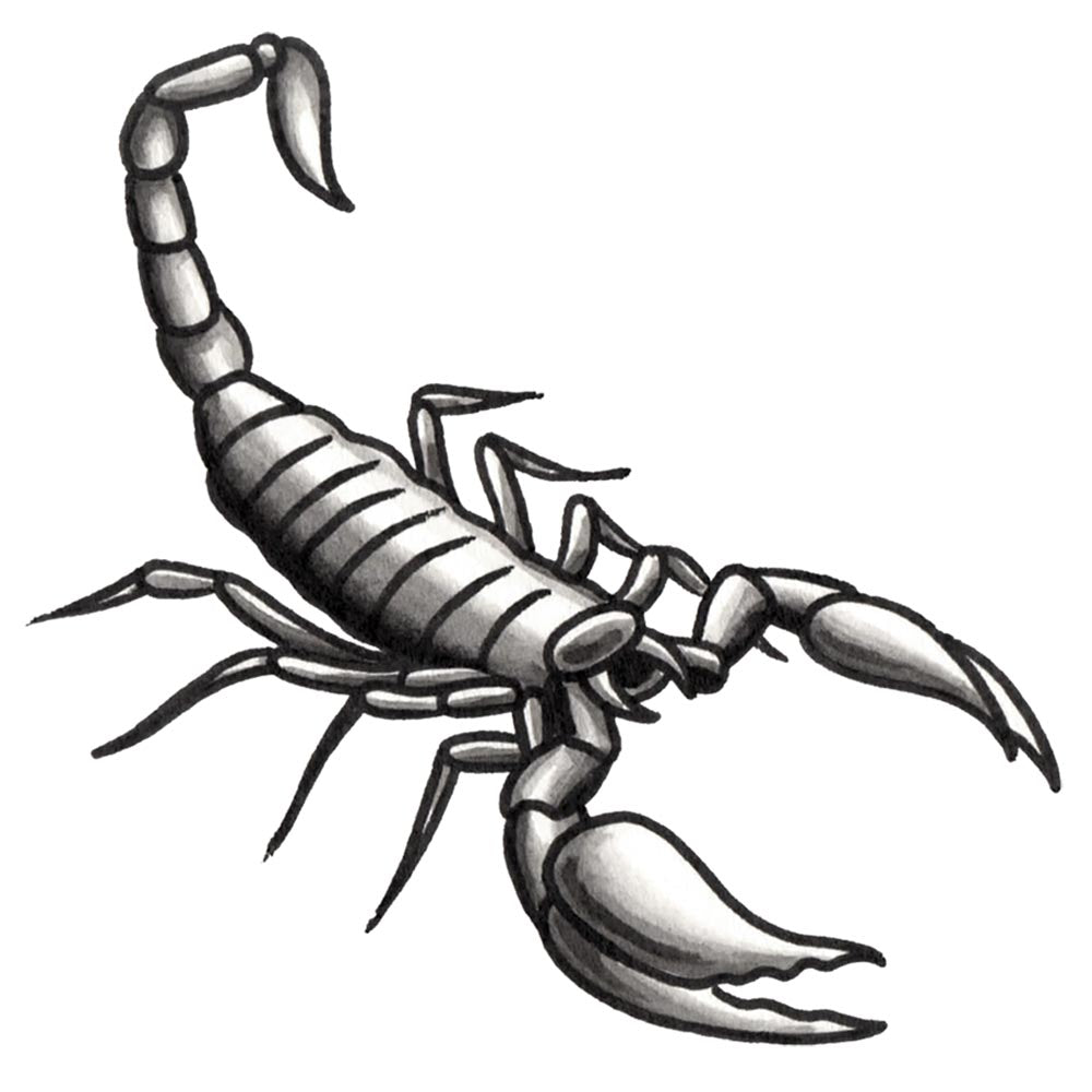 The Scorpion Temporary Tattoo - 3