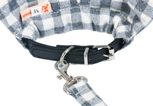 Small Dog Fancy Collar and Leash