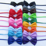 Load image into Gallery viewer, Special Bow Tie