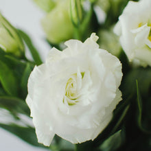 Lisianthus - White  - Bunch