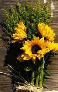 Sunflower - Yellow  - Bunch