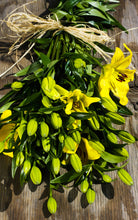 Lilies - Asiatic - Yellow  - Bunch