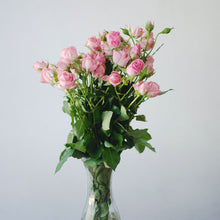Spray Roses - Pink  - Bunch