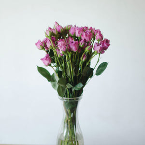 Spray Roses - Lavendar  - Bunch
