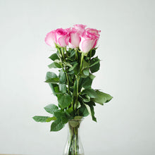 Roses - Pink  - Bunch