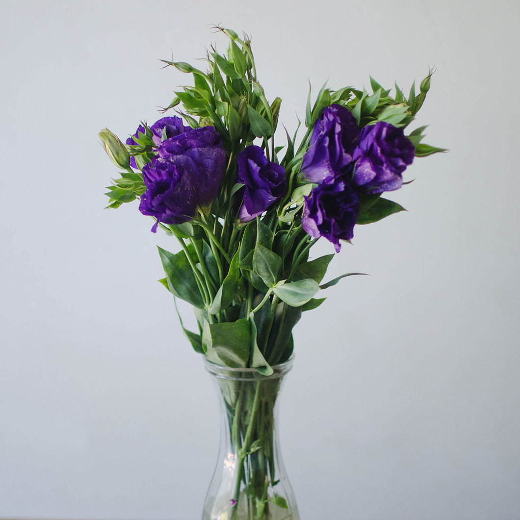 Lisianthus - Purple  - Bunch