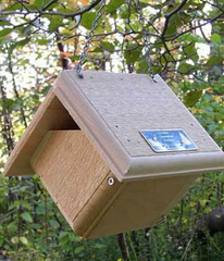 Carolina Wren Birdhouse