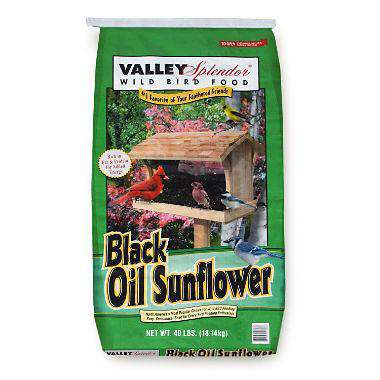 Valley Slpendor Black Oil Sunflower 40 lbs