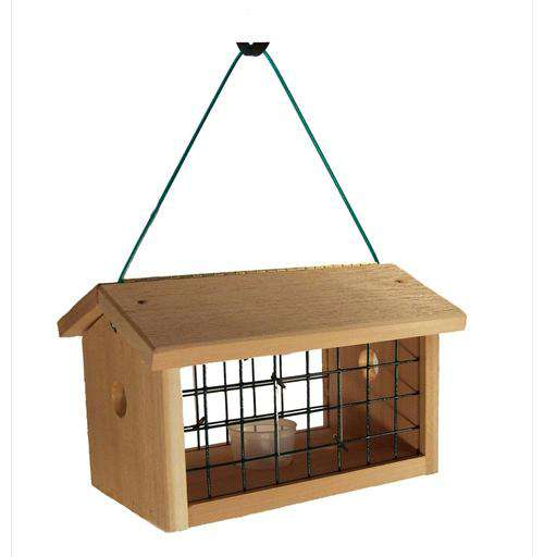 Songbird Essentials Protected Bluebird Jail Feeder