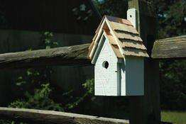 Heartwood Bluebird Manor House White?? - World of Birdhouses