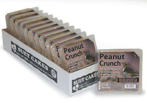 Heath Outdoor Products DD-18 Peanut Crunch Suet Cake, 12-Pack - World of Birdhouses