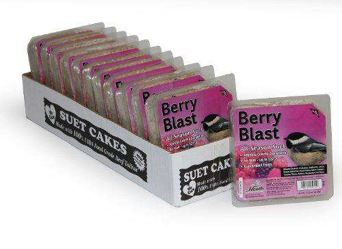 Heath Outdoor Products DD-15 Berry Blast Suet Cake, Case of 12 - World of Birdhouses