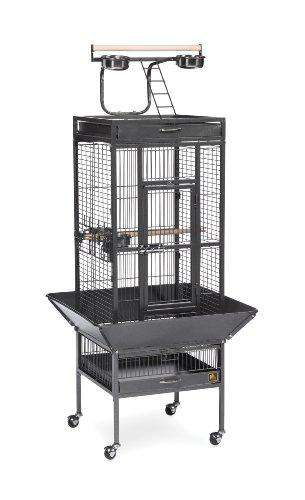 Prevue Wrought Iron Select Bird Cage - World of Birdhouses
