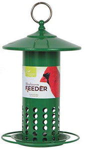 Pacific Bird and Supply Green Mealworm Feeder - World of Birdhouses