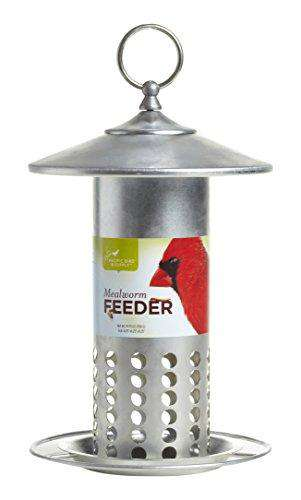 Pacific Bird and Supply Galvanized Mealworm Feeder - World of Birdhouses