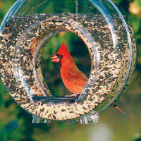 Stokes Canteen Bird Feeder
