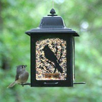 Perky-Pet Birds and Berries Lantern Feeder - World of Birdhouses