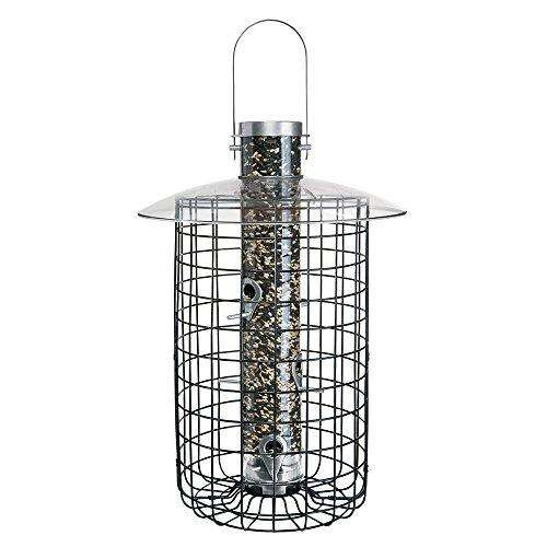 Droll Yankees Squirrel Proof Bird Feeder - World of Birdhouses