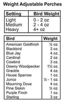 Audubon Bird's Delight Squirrel Resistant Bird Feeder - World of Birdhouses