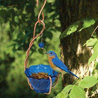 Songbird Essentials Copper Bluebird Mealworm Feeder