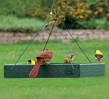Woodlink Going Green Platform Bird Feeder♻️