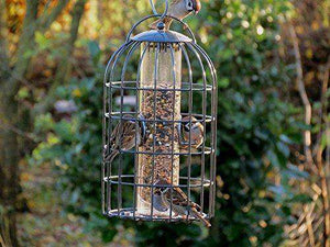 The Nuttery  Classic Seed Feeder, X-Large - World of Birdhouses