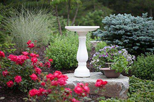 Bloem Promo Bird Bath (Peppercorn)