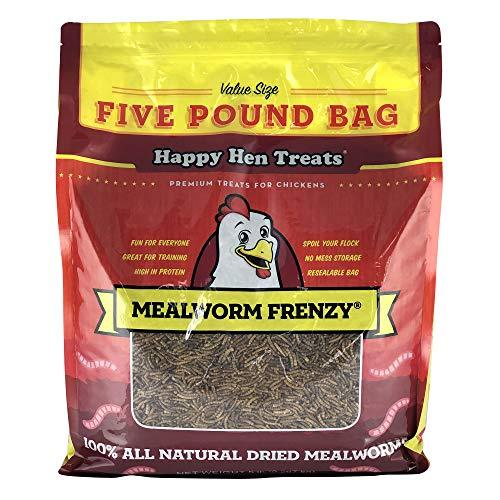 Happy Hen Treats Mealworm Frenzy Pet Treat (1 Pouch), 5 Lb