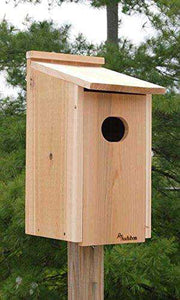 Wood Duck Nest Bird House🚚 - World of Birdhouses