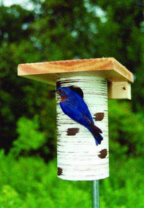 Gilbertson PVC & Cedar Bluebird House - World of Birdhouses