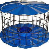 Caged Mealworm Bluebird Feeder - World of Birdhouses
