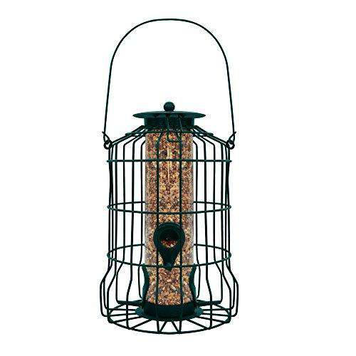 GrayBunny Squirrel Resistant Caged Tube Feeder - World of Birdhouses