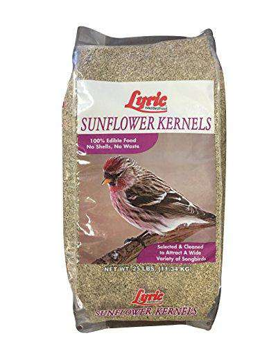 Lyric Sunflower Kernels - 25 lb. bag - World of Birdhouses