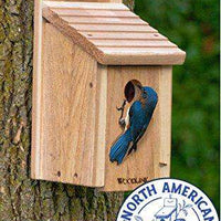 Woodlink Wooden Bluebird House - World of Birdhouses
