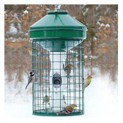 Woodlink Caged Seed Feeder - World of Birdhouses