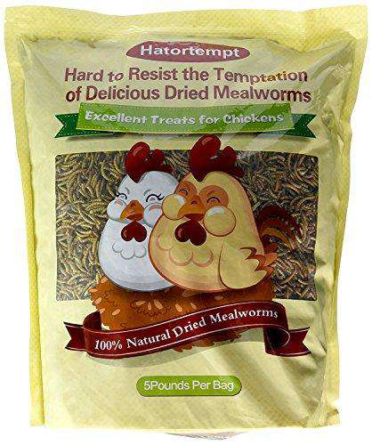 Hatortempt Dried Mealworms for Wild Birds 5 Lbs - World of Birdhouses
