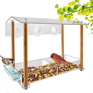 Acrylic Bird Feeder