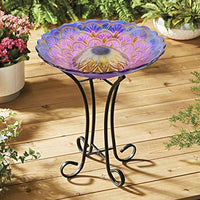 Hi-Line Gift Solar Floral Glass Bird Bath with Stand