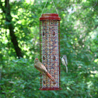 Perky-Pet Squirrel Resistant  Easy Feeder - World of Birdhouses