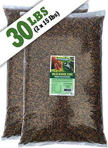 NaturesPeck Mealworm Time Dried Mealworms ??(30 lb) - World of Birdhouses
