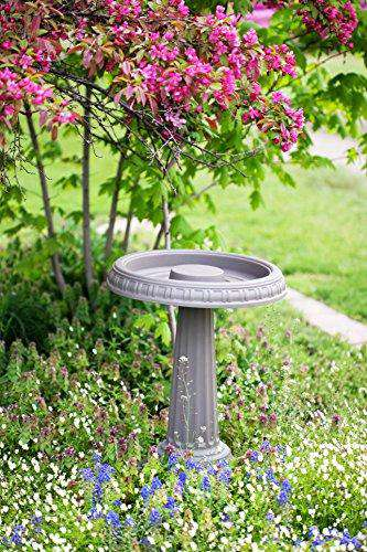 Bloem Grecian Bird Bath🚚