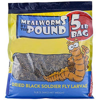 Mealworms by the Pound Dried Black Soldier Fly Larva (5 Lbs)