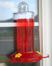Perky-Pet Window Mount Hummingbird Feeder