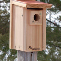 Copper Roof Bluebird House - World of Birdhouses