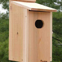 Wood Duck Birdhouse - World of Birdhouses
