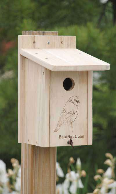 BestNest Seasonal Bluebird House? - World of Birdhouses