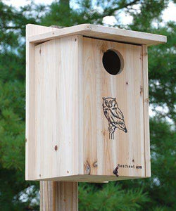 BestNest Premium Screech Owl/Kestrel House - World of Birdhouses