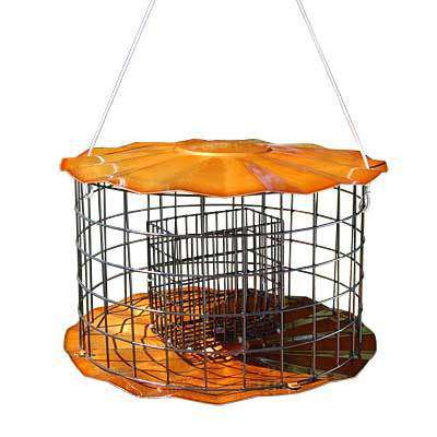 Erva Caged Double Suet Feeder, Copper? - World of Birdhouses